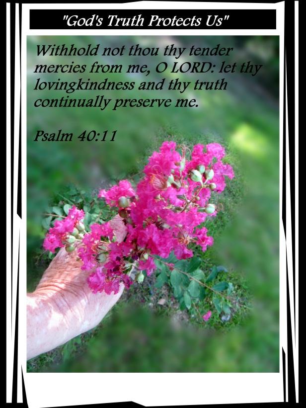 SX260 HS ©Photo Artist Susan Ruth Robertson 090025006100 010 - Copy.jpg