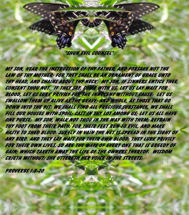 © Photo Artist Susan Ruth Robertson 090025006100 016 - Copy (3) - Copy.JPG