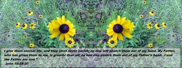 © Photo Artist Susan Ruth Robertson 090025006100 009 - Copy
